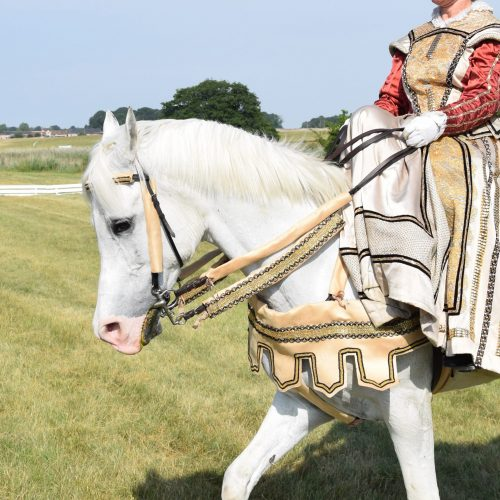 Création Coiffe Cavalière et Customisation Bride Cheval